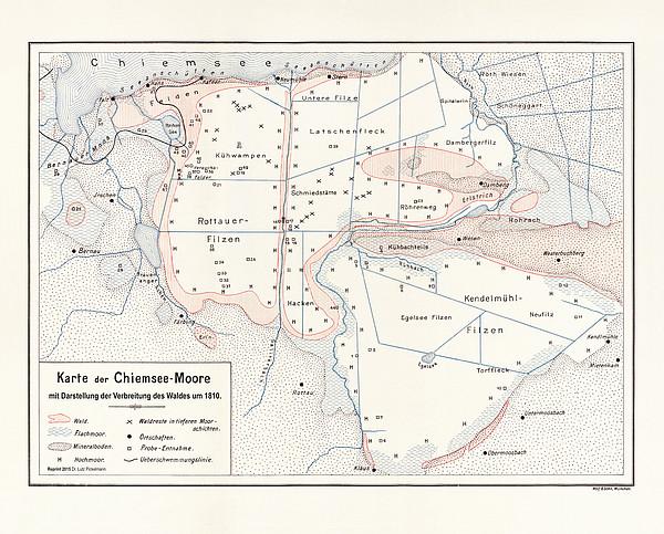Waldverteilung in den südlichen Chiemsee-Mooren um 1810