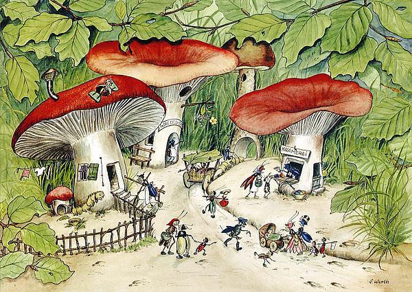 Illustration Bodenleben